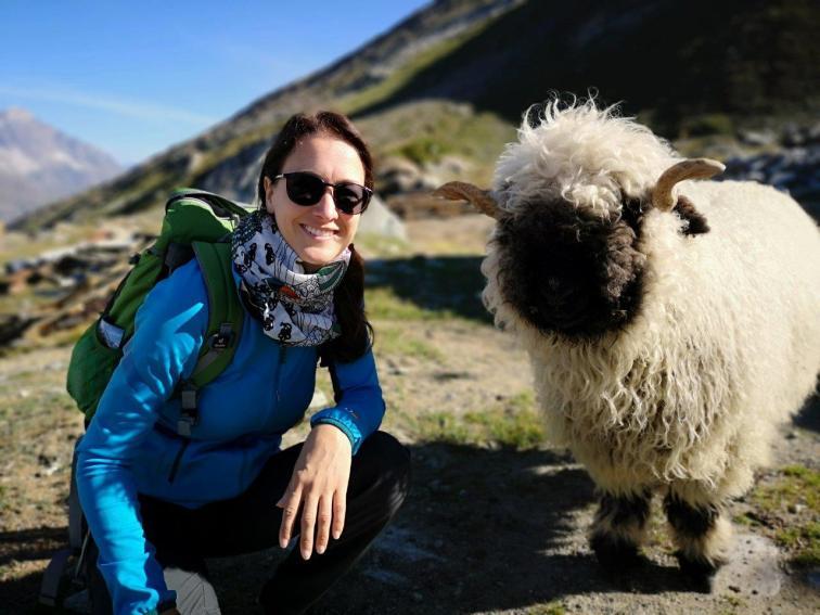 Egon das Schaf