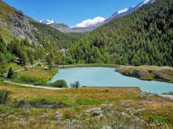 5 Seenweg Zermatt - Moosjisee